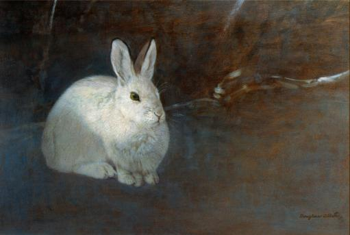 Sun Spot - Snowshoe Hare - 2000 - Oil On Panel - 10 x 12 1/2
