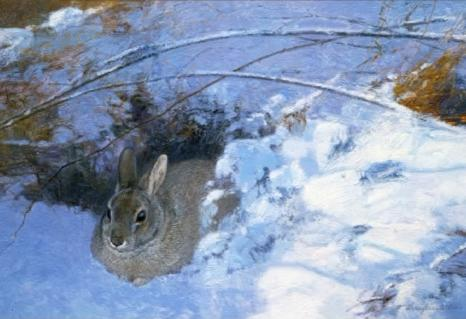 Cottontail - 1996 - Oil On Panel - 9 x 14