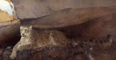 Melt Water - Snow Leopard - Oil On Panel - 28 x 48