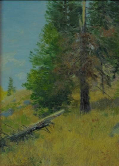 Hillside in Wyoming - 1994 - Oil On Board - 9 x 6